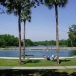dls-swimmingpool-park